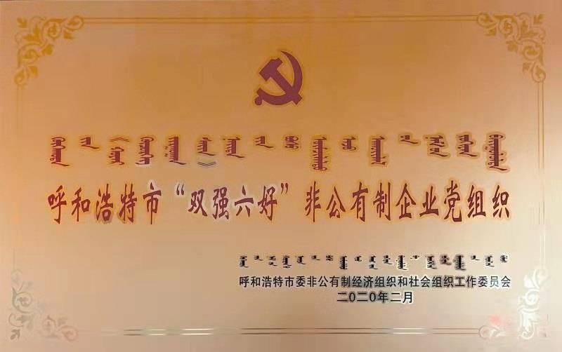 """荣获呼和浩特市""""双强六好""""非公企业党组织"""